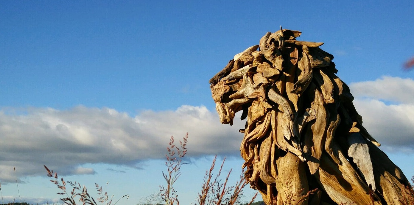 Amazing driftwood sculptures.